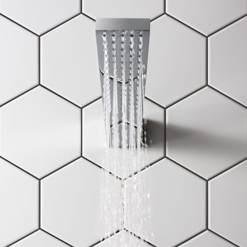 West One Bathrooms Zion Shower Head FH1000C C