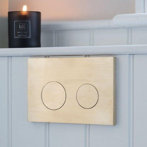 Omega Flush Plate via West One Bathrooms